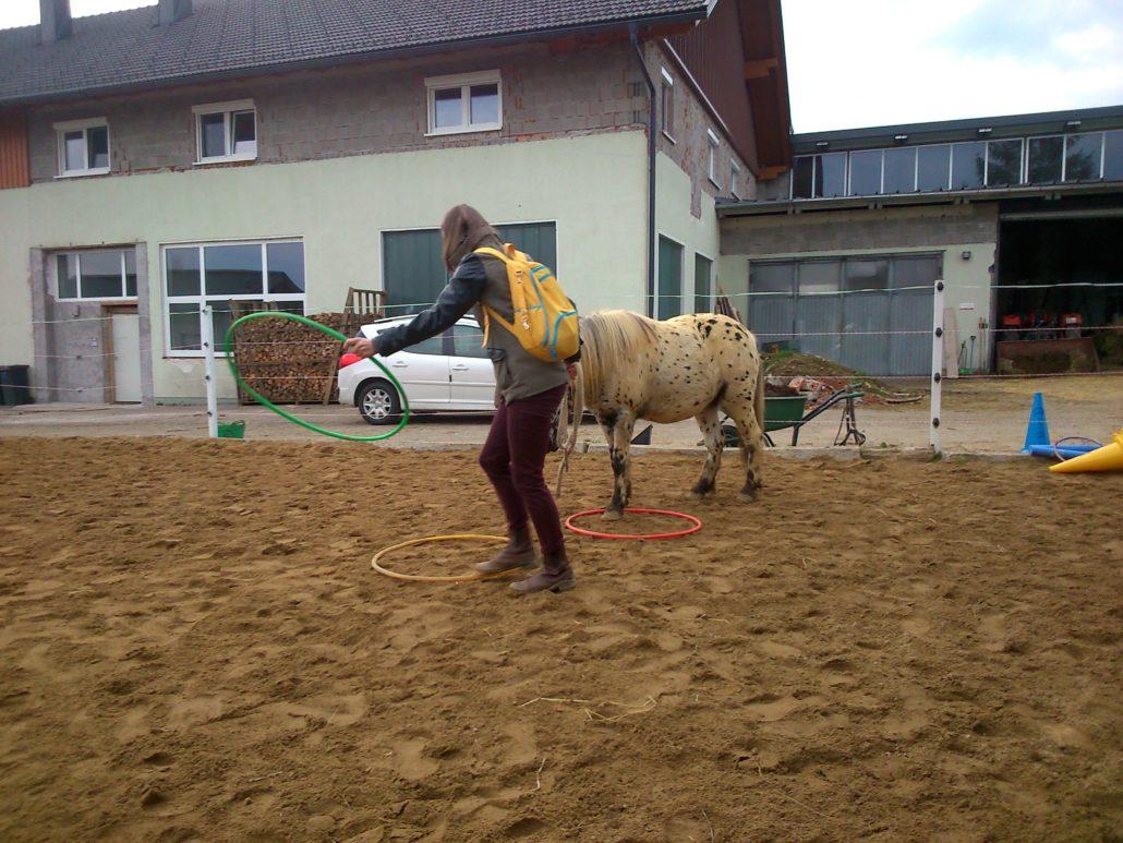 Pferdegestützte Coaching